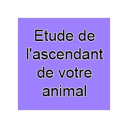 Etude de l'ascendant de votre animal